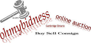 Online Auction On Now Advertising Old Sports Toys & More Cambridge Kitchener Area image 1