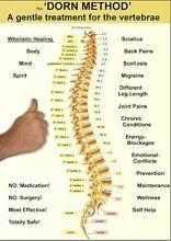 Massage Shiatsu -Dorn Method -Spa- and Qigong Retreat Corlette Port Stephens Area Preview