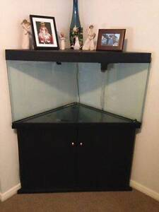 Blue Planet 160L Corner Tank including Stand Raymond Terrace Port Stephens Area Preview