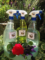 PROFESSIONAL CLEANING AND NATURAL PRODUCTS