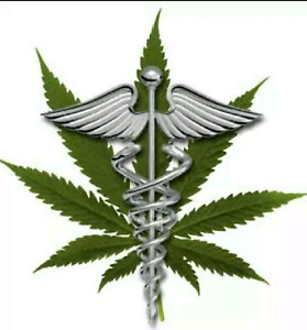Cannabis growing license for Medicine