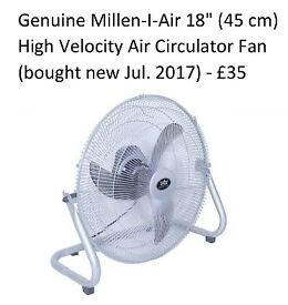 Big Fan (Millen-I-Air 18), lamps & power plugs for sale!