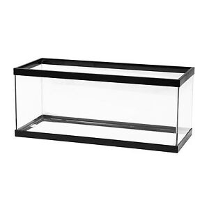 Looking for 20 gal long Aquarium