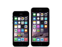 iPhone 5 and iPhone 6 job lot