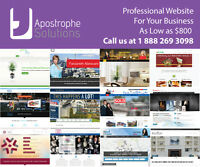 Special Offer-Professional Website Design and Development