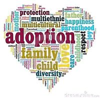 ISO Information about Adopting