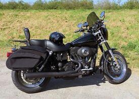 Harley Davidson T Sport Saddlebags