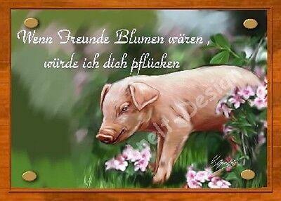 Schwein /   Ferkel   /   Schild  / Bild  / B37