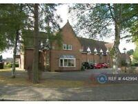 2 bedroom flat in Pool Meadow Close, Solihull, B91 (2 bed) (#442994)