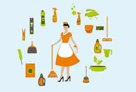 Experience House Cleaner