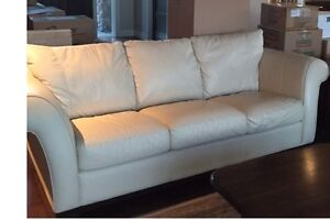 Nutuzzi Leather Couches