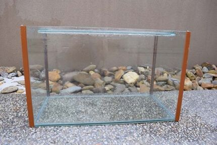 Spacious Axolotl / Reptile / Fish tank !!! includes filter Beaumaris Bayside Area Preview