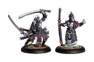 Hordes: Legion of Everblight Swordsmen Abbot & Champion PIP 73043