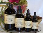 Chaga Liquid Herbs & Botanicals