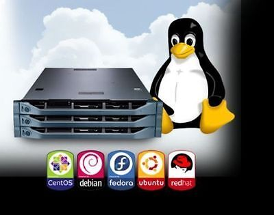 Limited Offer Linux Vps Virtual Private Server  Full Root Unlimited Bandwidth