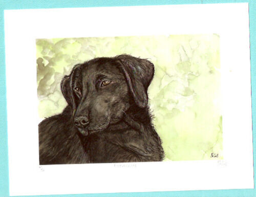 Flat Coated Retriever Limited Edition Art Print by Elle Wilson Forevermore*