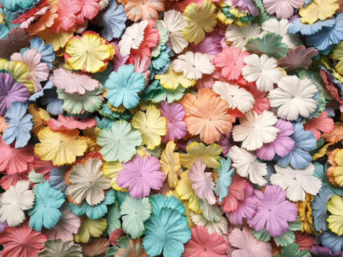 50+Mixed+Pastel+Color+Petals+Carnation+Flowers+Mulberry+Paper+For+Craft+%26+D.I.Y