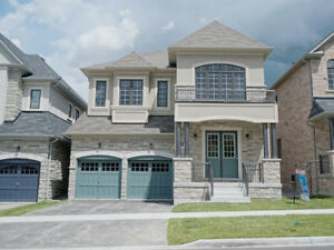 4 bedrooms detached house in 16th Ave/Markham Rd for rent