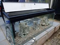 Large 160 litre fish tank with all accessories for tropical fish
