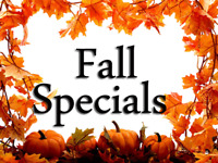 Fall Duct Cleaning Flat Rate $99 Call at 289-204-1662