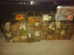 BEANIE BABIES ALL in soft cases with tag protectors. Kitchener / Waterloo Kitchener Area image 3