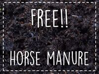 Free 100% Horse Manure
