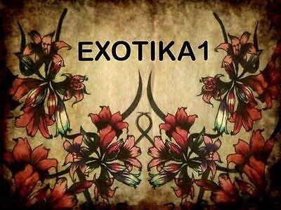 Exotika1