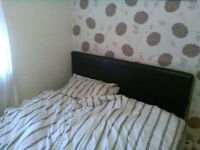 room to let in bolton