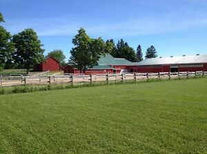 Boarding and Training Barn
