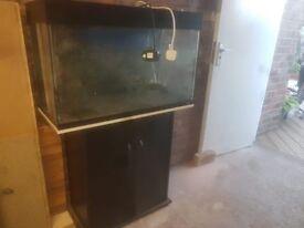 Juwel Rio 125l Aquarium Black with stand
