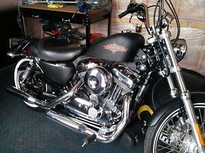 Harley 2013 modèle seventy two