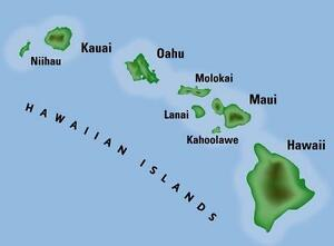get anything done in Hawaii from anywhere in the world by me. Strathcona County Edmonton Area image 2