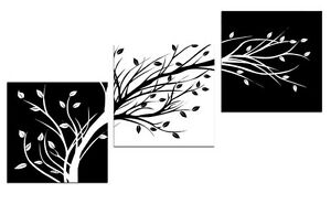 3 Black & White Trees painted on Stretched Canvas