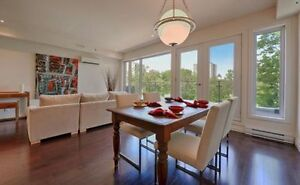 Furnished penthouse condo Downtown, FOR RENT