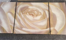 Cream rose wall art canvas