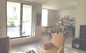 Fabulous and Great Price Sublet 3 1/2  Apart at La Cite Downtown