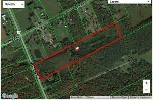 15.79 ACRES OF GREEN LAND IN VARS FOR SALE!