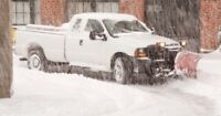 SNOW REMOVAL $100 A MONTH!!!!