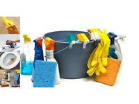 Anna's Cleaning Services / Home Cleaner