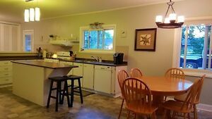 Great family home in a great family area Kingston Kingston Area image 5