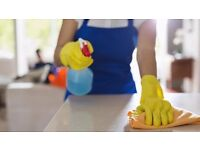 Cleaner/Housekeeper required by expanding local company. North Down/N'Ards/Bangor/Holywood, Belfast