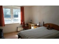 One big double room to share in flat