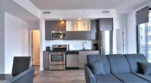 1 Bedroom Condo near McGill and Place Des Arts