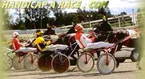 Free to use Harness Racing selector tools