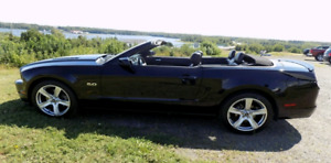 2014 Ford Mustang Convertible 5.0L