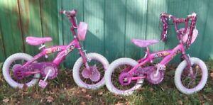 Twin Princess Skimmers Pink Bikes