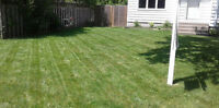 Get your lawn cut for FREE by John Wright's Lawn Services