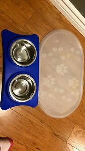 cat small dog food bowls and place mat