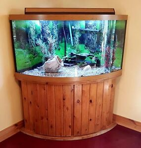 AQUARIUM - Large corner unit
