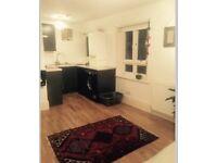 Studio flat Pelham crescent
